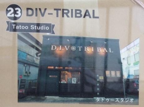 〔23〕DIV-TRIBAL