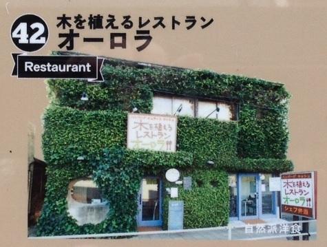 〔42〕木を植えるレストラン オーロラ