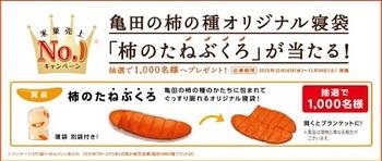 亀田製菓001.jpg