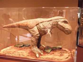 チョコレート展_恐竜
