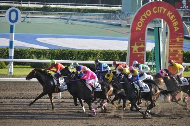 ブログ記事トップ画像_東京シティ競馬