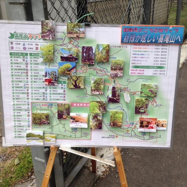 木下沢梅林_高尾山観光マップ