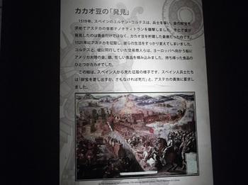 チョコレート展_カカオの歴史